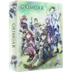 Grimgar Ashes and Illusions...