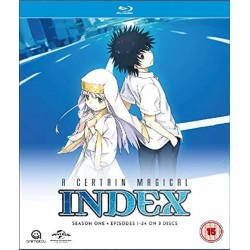 A Certain Magical Index...