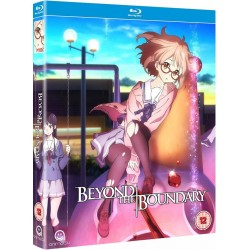 Beyond the Boundary -...
