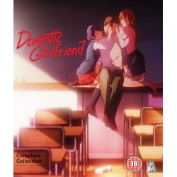 Domestic Girlfriend...
